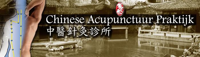 praktijk chinese geneeskunde